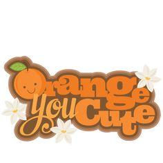 Orange You Cute SVG cutting files flower svg cut file flower svgs cute svg cut files for cricut cute cut files free svgs