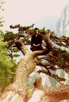 meditating taoist