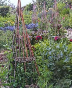 wicker  obelisks