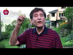 Atherosclerosis - Dr. Hans Diehl (Part 2)