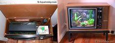 TV turned fish tank