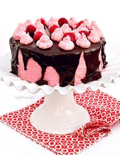 Dark Chocolate Cake with Toasted Marshmallow Filling and Raspberry Buttercream