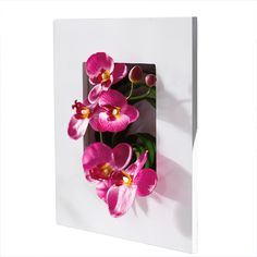 "Kunstpflanze Orchidee im Rahmen ""Pink"" #gingar #dekoration #decoration"