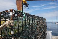 Lobster Traps, Rockport, Mass.