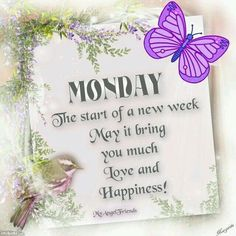 Monday The Starts Of A Happy New Week monday good morning monday quotes good morning quotes happy monday have a great week monday quote happy monday quotes good morning monday cute monday quotes monday quotes for family and friends monday greetings