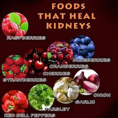 Better Kidney Health Use these foods to accompany your lemon water in healing those Kidneys. Remember, these 2 precious organs filter every drop of liquid that comes into your body! - Healthy Holistic Living Post source: Holistic Dad and Raw For Beauty Health And Nutrition, Health And Wellness, Health Tips, Health Benefits, Health Articles, Health Care, Fruit Benefits, Health Resources, Nutrition Education