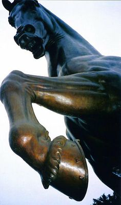 Horse Sculpture by Leonardo da Vinci, Milan, Italy  by Igor Pozdnyakov, province of Milan, Lombardy