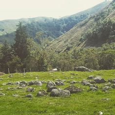 By The Way #colombia #cocora #valle #quindio #stones #landscape…