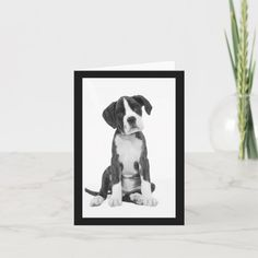 Boxer Puppy Dog Blank Note Card - tap to personalize and get yours #puppy #dog #birthday #puppies #boxer