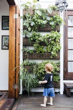 Balcony Herb Gardens, Vertical Herb Gardens, Small Herb Gardens, Vertical Garden Design, Rooftop Garden, Outdoor Gardens, Wall Herb Garden Indoor, Apartment Herb Gardens, Balcony Gardening