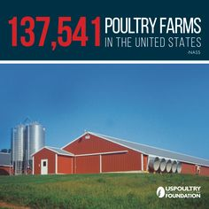 DYK: There are 137,541 poultry farms in the United States? #AgWeek #Farming
