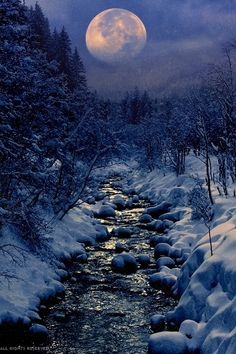 heaven-ly-mind:  Winter Creek by Peter From on 500px