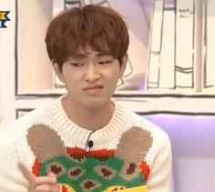 K Meme, Funny Kpop Memes, Stupid Memes, Meme Faces, Funny Faces, Shinee Members, Programa Musical, Choi Min Ho, Shinee Taemin