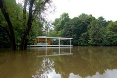 Mies van der Rohe_Casa Farnsworth_Crecida del río Fox