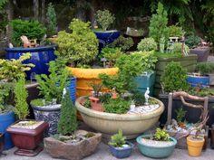miniature garden ideas miniature and fairy garden questions are answered the mini garden Garden Trees, Garden Planters, Indoor Garden, Potted Garden, Indoor Bonsai, Bonsai Garden, Outdoor Planters, Flower Planters, Outdoor Gardens