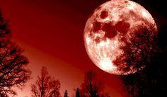 ¿El Eclipse de Luna de Sangre este 27 de septiembre significa el fin del mundo?No, pero tal vez significa el fin del mundo tal como lo conocemos.Ha habido un gran desenlace en los últimos meses o incluso años, que a todos nos está preparando para dar a luz a algo nuevo. El día 27 no sólo tenemos una luna de cosecha, Súper Luna y una Luna de sangre, sino también un Eclipse que es parte de una serie de cuatro que comenzó en 2014.