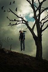 picturesof hanging noose from tree | Death of a Creative Director (or 5 Feet of Rope) (oz_jester) Tags ...