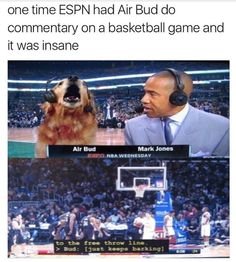 What it will take for me to willingly watch sports.  Via @thisfuknguy ______________  #airbud #basketball #espn #sports #goteam #bball #freethrow #bork #barking #goldenretriever #goldensofinstagram #goldensofig #retriever #nba #ftw #doggo