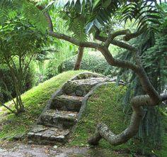 Japanese Garden    This is a corner of Buddha Maitreya's Japanese garden