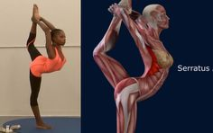 How To Lord of The Dance Pose, Natarajasana, Yoga Pose, Muscle Anatomy R...