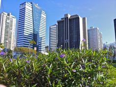Vitória - Espírito Santo, Brazil