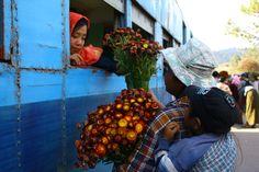 Kalaw / Myanmar by Juliana Velez