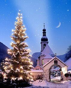 My wish is for Peace on earth ~ that we find good will toward ALL.