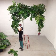 Finishing touches! Tropical wedding arch!