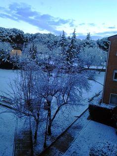 Los mundos de Esthercita: Un día con nieve