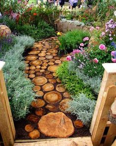 I like the color and shape of the stones in the walkway. They look like slices from a log. Also a nice contrast with the colors around it and the dark dirt or mulch around the stones.
