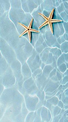 smartphone wallpaper - starfish in ocean Summer Themed Wallpaper, Ocean Wallpaper, Wallpaper Backgrounds, Iphone Wallpapers, Iphone Wallpaper Summer, Iphone Backgrounds, Cellphone Wallpaper, Funny Wallpapers, Light Blue Aesthetic