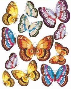 papillons, paint