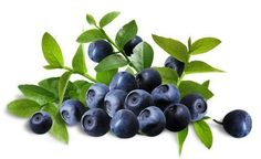 Bilberry as a home remedy for white floaters in the eye #EyeFloatersCauses