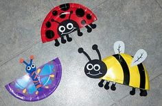 Insecte avec assiette de carton