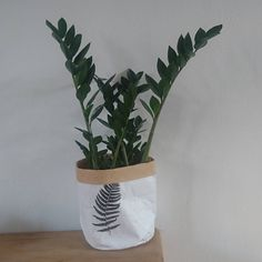 White Wood, Black And White, Flower Power, Planter Pots, Touch, Instagram Posts, Flowers, Black White, Florals