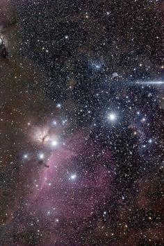 Orion and Eridanus, Hisayoshi Kato