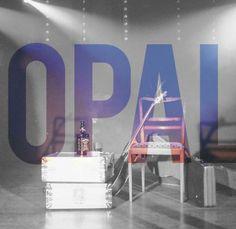 """Płyta """"Opal"""" formacji Cynamonowa Kaczka, dedykowany jest pamięci Jerzego Opalińskiego, białostockiego bluesmana, związanego m.in. z Kasą Chorych. Koncert został zarejestrowany 22 listopada 2013 podczas 29 """"Jesieni z Bluesem""""."""