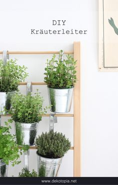 DIY Anleitung: Platzsparende Pflanzidee für Deine Küchenkräuter - Kräuterleiter selber bauen
