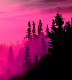 Aesthetics - HOT PINK - Wattpad Pink Sky, Pink Love, Bright Pink, Pretty In Pink, Pink Black, Dark Blue, Photo Wall Collage, Picture Wall, Orange Pastel