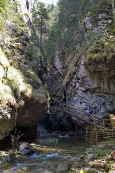 Wandern Bärenschützklamm Steiermark Austria, Wanderlust, Hiking, Plants, Travel, Outdoor, Holiday Destinations, Waterfall, Graz