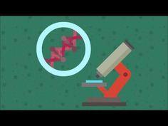 Les maladies rares - FUTUREMAG - ARTE - YouTube