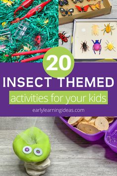 Find lots of fun insect activities  ideas for your preschool and pre-k classroom or learning at home. These activities are perfect for your insects  bugs theme, Spring theme, or outdoor theme units and lesson plans. From lady bugs to the Very Hungry Caterpillar you will find science, circle time, gross motor, sensory bins, dramatic play, literacy activities, math activities and craft ideas featuring insects and bugs. Kids will have so much fun learning about insects and their life cycles.