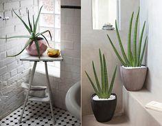 Einrichtung elegante badezimmergestaltung mit aloe vera_badezimmer weiß mit schwarzweißen bodenfliesen, weißer ziegelwand und freistender badewanne mit beistelltisch