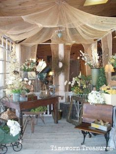 Window garden display under a tobacco cloth tent