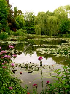 Monet's Pond - Giverny, France