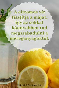 Egészséges táplálkozás - kezd a napot citromos szűrt vízzel! Healthy Lifestyle, Lime, Fruit, Food, Eten, Limes, Meals, Healthy Life, Key Lime