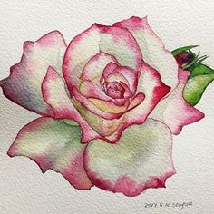What is Your Painting Style? How do you find your own painting style? What is your painting style? Is there a way to make sure you have it? Watercolor Rose, Watercolor Cards, Watercolor Paintings, Watercolor Ideas, Rose Paintings, Watercolors, Simple Watercolor, Fabric Painting, Painting & Drawing