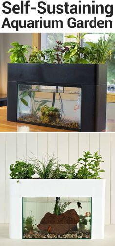 9 best self sustaining terrarium images terrarium ideas garden
