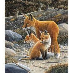Fox family Canvas Art - Jan Weenink x Wildlife Paintings, Wildlife Art, Animal Paintings, Art Fox, Animals And Pets, Cute Animals, Vida Animal, Fox Drawing, Fox Painting