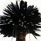 headdress-dog-soldier